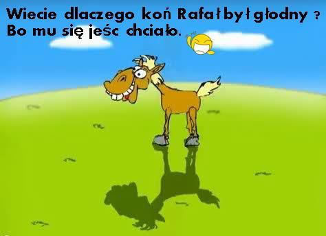 Wiecie dlaczego koń Rafała był głodny? Bo mu się jeść chciało.