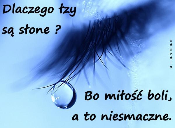 Dlaczego łzy są słone? Bo miłość boli, a to niesmaczne.