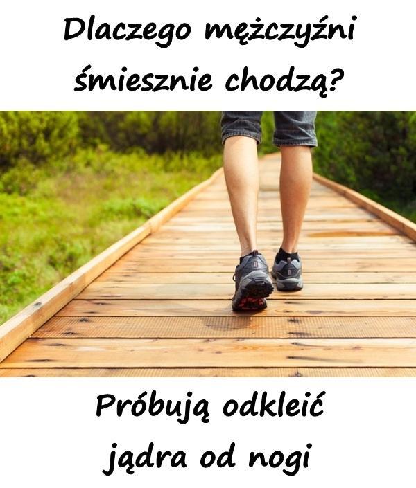 Dlaczego mężczyźni śmiesznie chodzą? Próbują odkleić jądra od nogi.