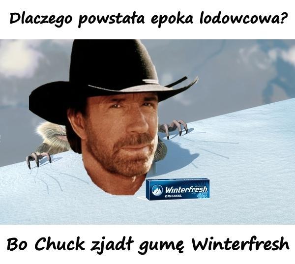 Dlaczego powstała epoka lodowcowa? Bo Chuck zjadł gumę Winterfresh.