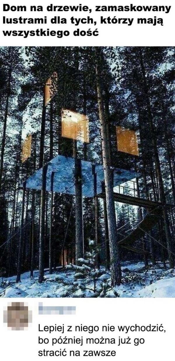 Dom na drzewie, zamaskowany lustrami dla tych, którzy mają wszystkiego dość