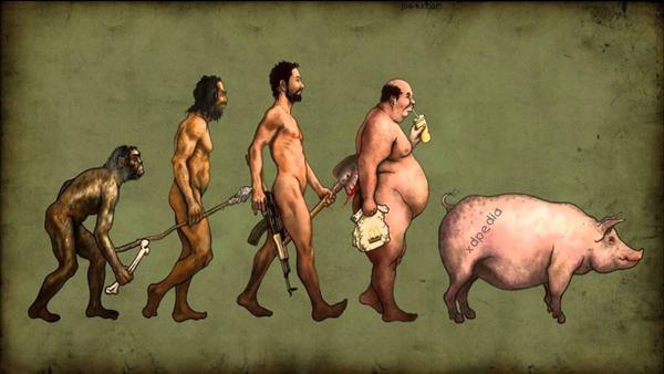 Ewolucja człowieka. Wszystko zaczęło się od małpy, a skończyło na świni. Obrazek w sam raz na reklamę fast food.