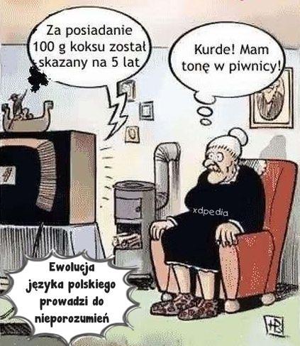 Ewolucja języka polskiego prowadzi do nieporozumień... TV: Za posiadanie 100 g koksu został skazany na 5 lat Babcia: Kurde! Mam tonę w piwnicy!