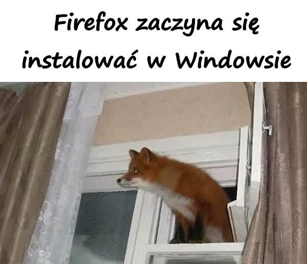 Firefox zaczyna się instalować w Windowsie