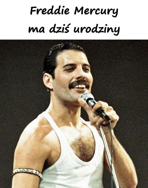 Freddie Mercury ma dziś urodziny