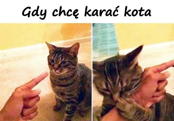 Gdy chcę karać kota