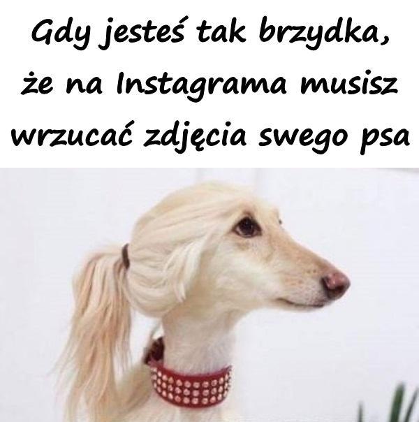 Gdy jesteś tak brzydka, że na Instagrama musisz wrzucać zdjęcia swego psa