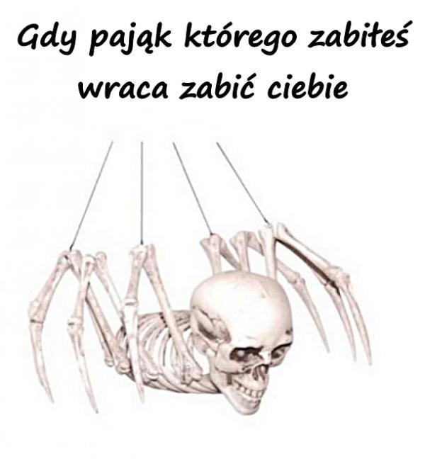Gdy pająk którego zabiłeś wraca zabić ciebie
