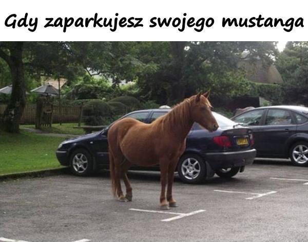 Gdy zaparkujesz swojego mustanga