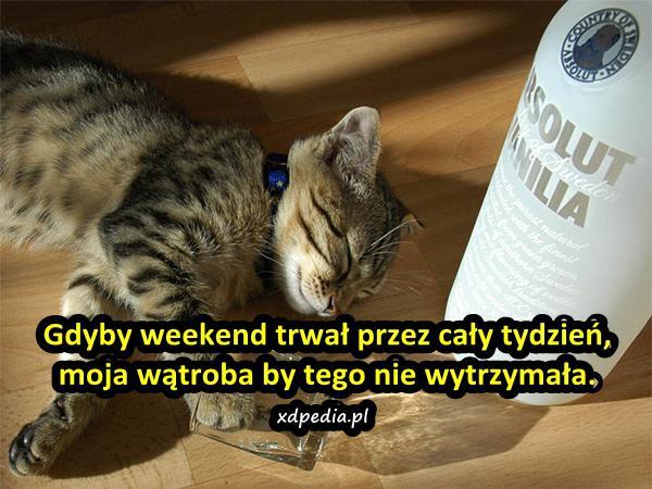 Gdyby weekend trwał przez cały tydzień, moja wątroba by tego nie wytrzymała.