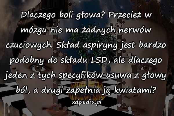 Dlaczego boli głowa? Przecież w mózgu nie ma żadnych nerwów czuciowych. Skład aspiryny jest bardzo podobny do składu LSD, ale dlaczego jeden z tych specyfików usuwa z głowy ból, a drugi zapełnia ją kwiatami?