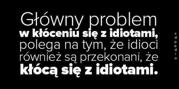 Główny problem w kłóceniu się z idiotami, polega na tym, że idioci również są przekonani, że kłócą się z idiotami.