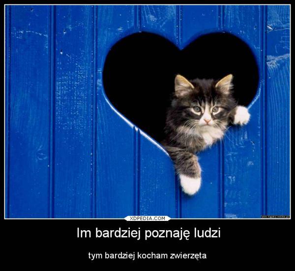 Im bardziej poznaję ludzi tym bardziej kocham zwierzęta Tagi: ludzie, zwierzęta, demoytwator.
