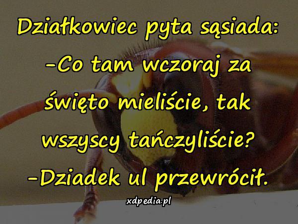 impreza_tance_balety_19345.jpg