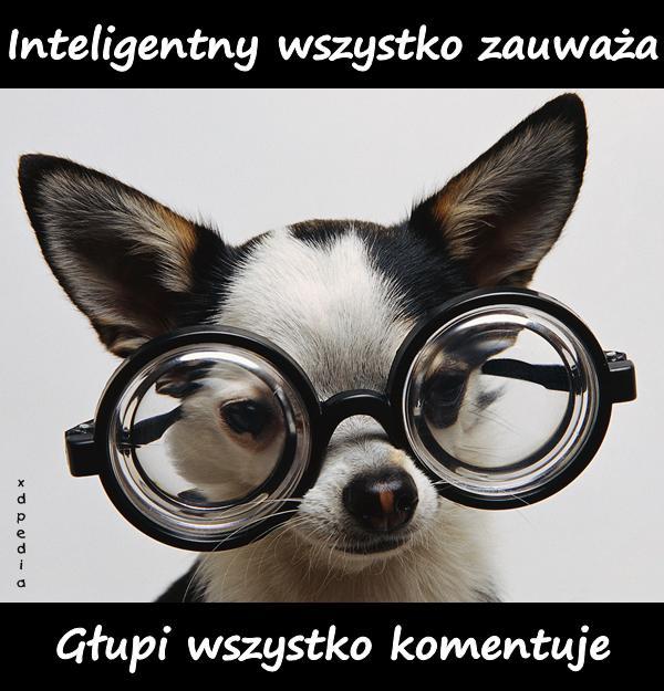 Inteligentny vs. głupi