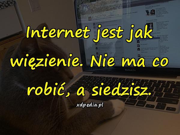 Internet jest jak więzienie. Nie ma co robić, a siedzisz.
