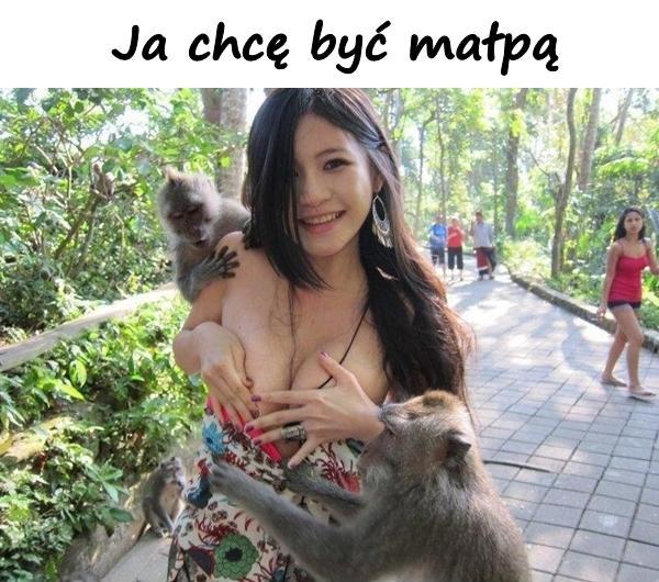 Ja chcę być małpą