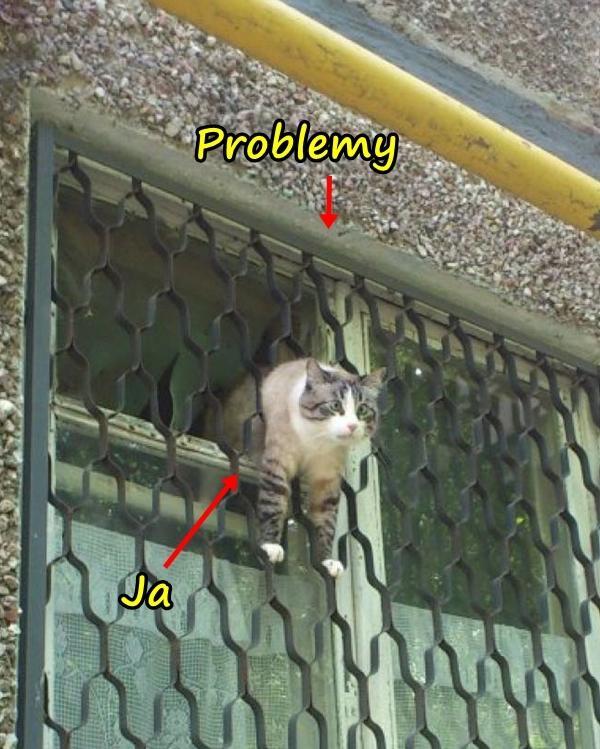 Ja i problemy