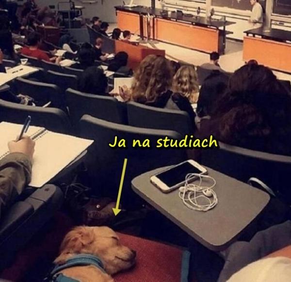 Ja na studiach