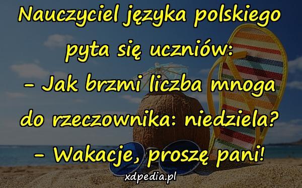 Nauczyciel języka polskiego pyta się uczniów: - Jak brzmi liczba mnoga do rzeczownika: niedziela? - Wakacje, proszę pani!