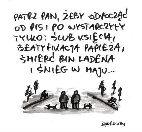 Patrz Pan, żeby odpocząć od PIS i PO wystarczyły tylko: ślub księcia, beatyfikacja papieża, śmierć Bin Ladena i śnieg w maju...