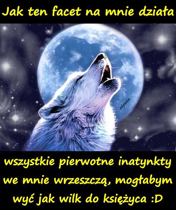 Jak ten facet na mnie działa, wszystkie pierwotne inatynkty we mnie wrzeszczą, mogłabym wyć jak wilk do księżyca :D