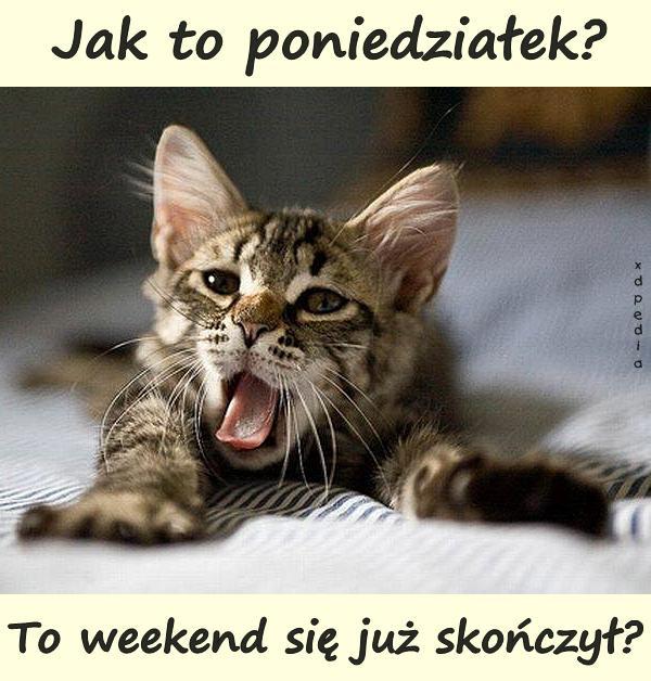 Jak to poniedziałek? To weekend się już skończył?