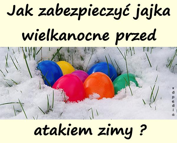 Jak zabezpieczyć jajka wielkanocne przed atakiem zimy?