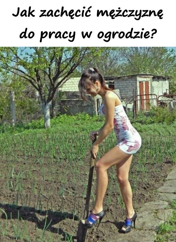 Jak zachęcić mężczyznę do pracy w ogrodzie?