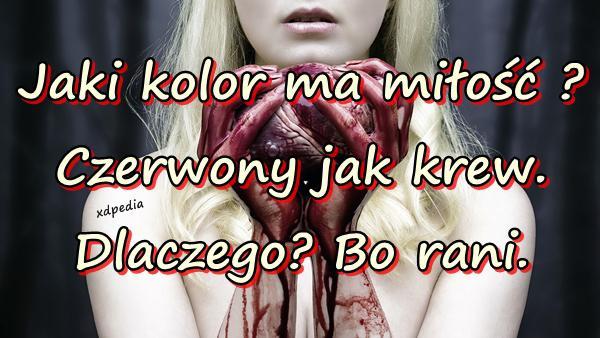 Jaki kolor ma miłość ? Czerwony jak krew. Dlaczego? Bo rani.