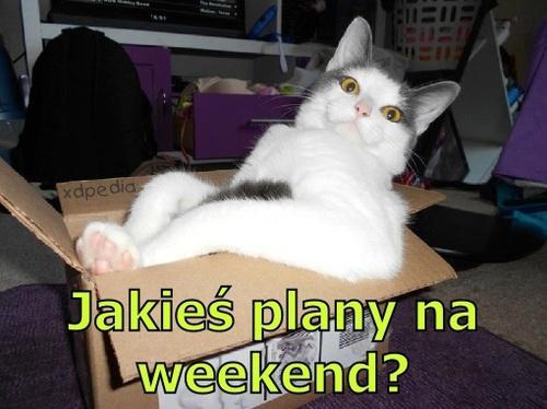 Jakieś plany na weekend?