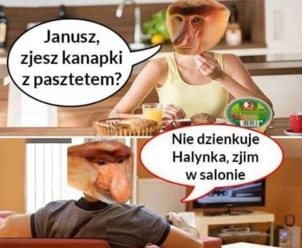 - Janusz zjesz kanapki z pasztetem? - Nie dzienkuje Halynka, zjim w salonie