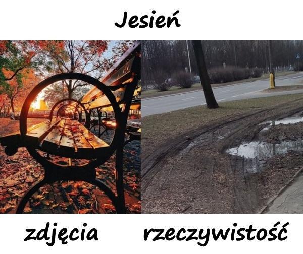 Jesień - zdjęcia i rzeczywistość