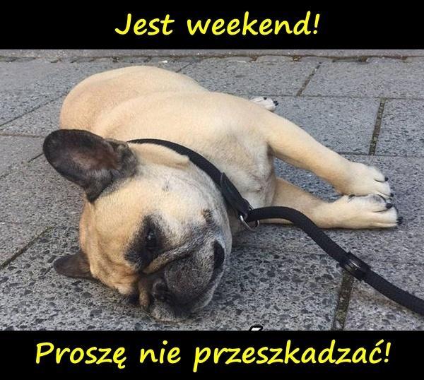 Jest weekend! Proszę nie przeszkadzać!