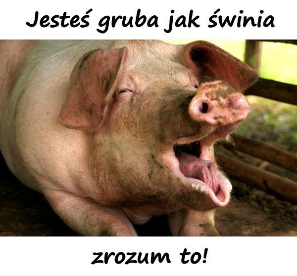 Jesteś gruba jak świnia, zrozum to!