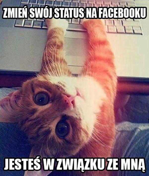 Zmień swój status na Facebooku! Jesteś w związku ze mną!