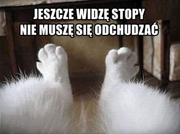 Jeszcze widzą stopy, nie muszę się odchudzać.