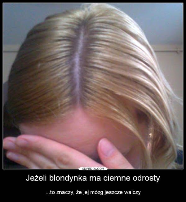 Jeżeli blondynka ma ciemne odrosty ...to znaczy, że jej mózg jeszcze walczy