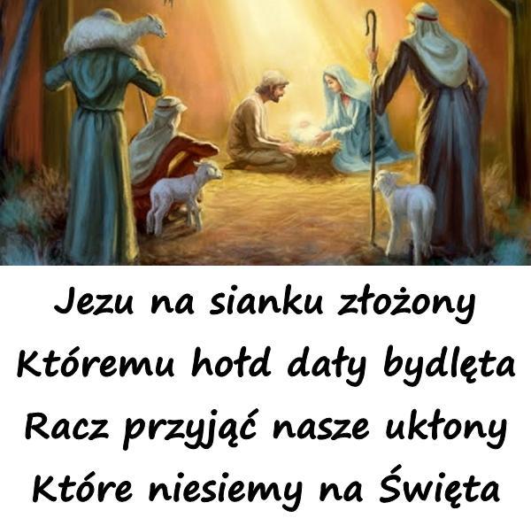 Jezu na sianku złożony Któremu hołd dały bydlęta Racz przyjąć nasze ukłony Które niesiemy na Święta