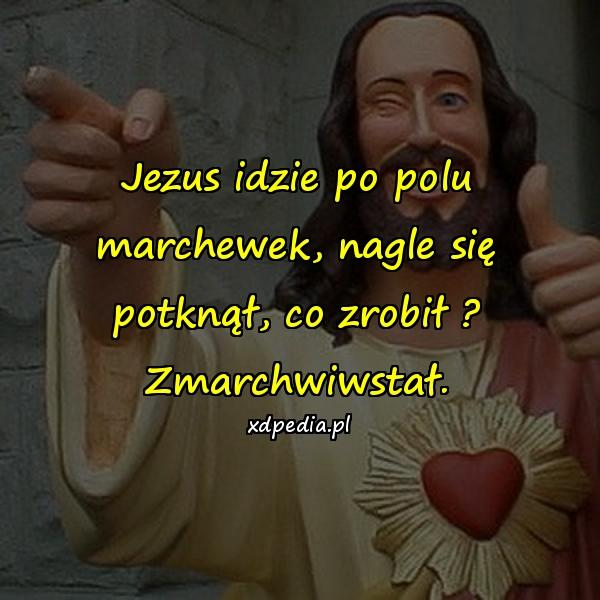 Jezus idzie po polu marchewek, nagle się potknął, co zrobił ? Zmarchwiwstał.