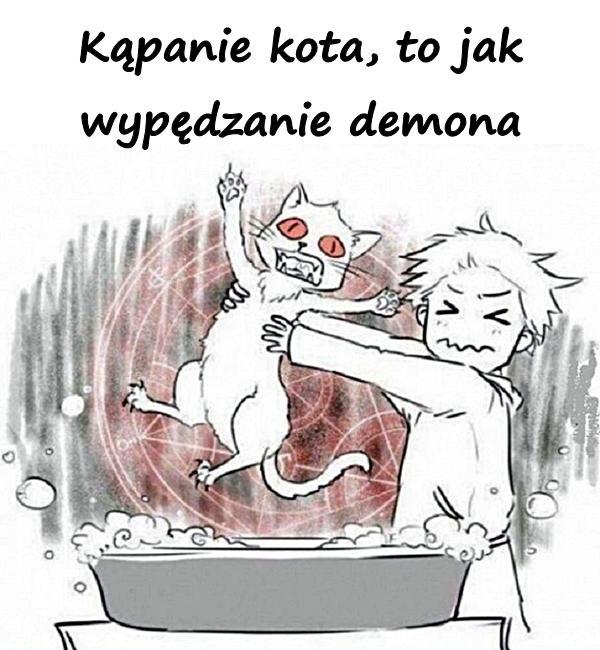 Kąpanie kota, to jak wypędzanie demona