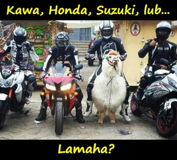Kawa, Honda, Suzuki, lub... Lamaha?