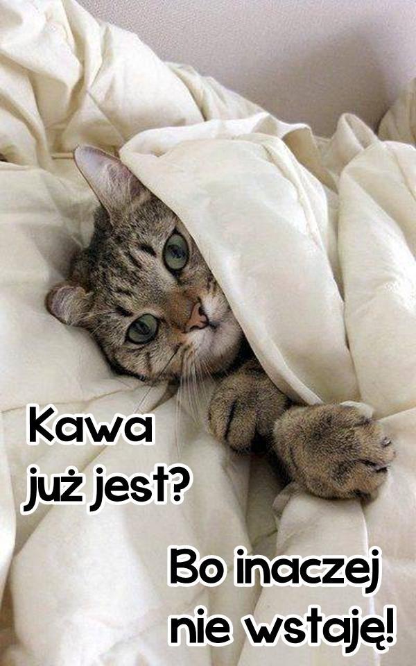 Kawa już jest? Bo inaczej nie wstaję!