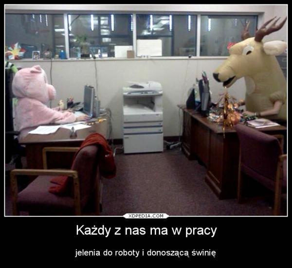 Każdy z nas ma w pracy jelenia do roboty i donoszącą świnię