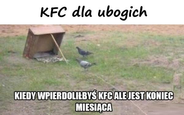 KFC dla ubogich
