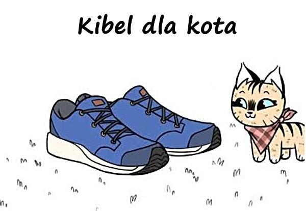Kibel dla kota