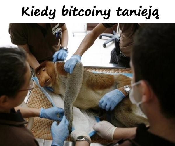 Kiedy bitcoiny tanieją