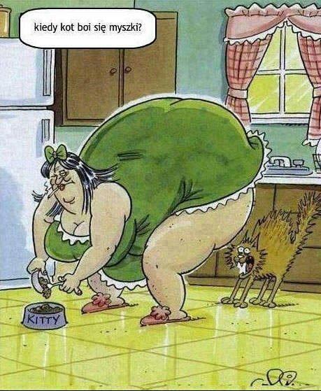 Sytuacja kiedy kot boi się myszki... jest możliwa
