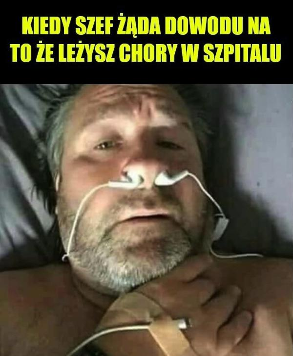 Kiedy szef żąda dowodu na to że leżysz chory w szpitalu.