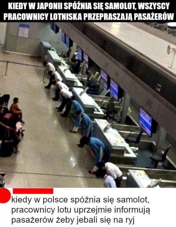 Kiedy w Japonii spóźnia się samolot, wszyscy pracownicy lotniska przepraszają pasażerów. Kiedy w Polsce spóźnia się , pracownicy lotu uprzejmie informują pasażerów, żeby jebali się na ryj.
